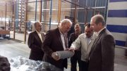 ✳️ بازدید حسینعلی حاجی از شرکت تجهیزات انتقال برق پارس